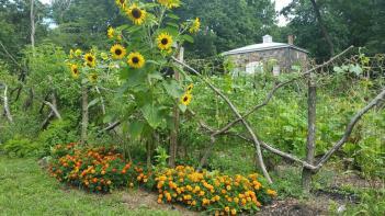 The Children's Garden at Bartow-Pell.