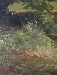 Ferns, left foreground