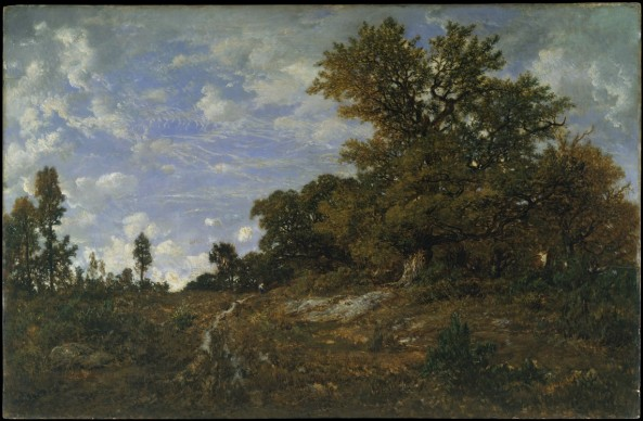 Théodore Rousseau, The Edge of the Woods at Monts-Girard, Fontainebleau Forest