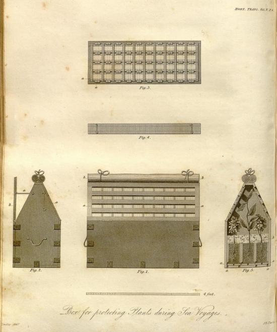 Box for sea voyage, v. 5